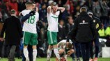 Northern Ireland players react